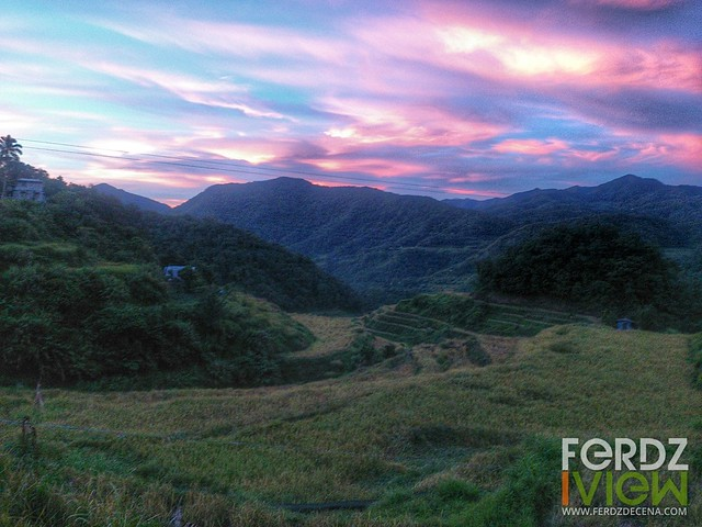 Rice terraces and sunrise while on the run