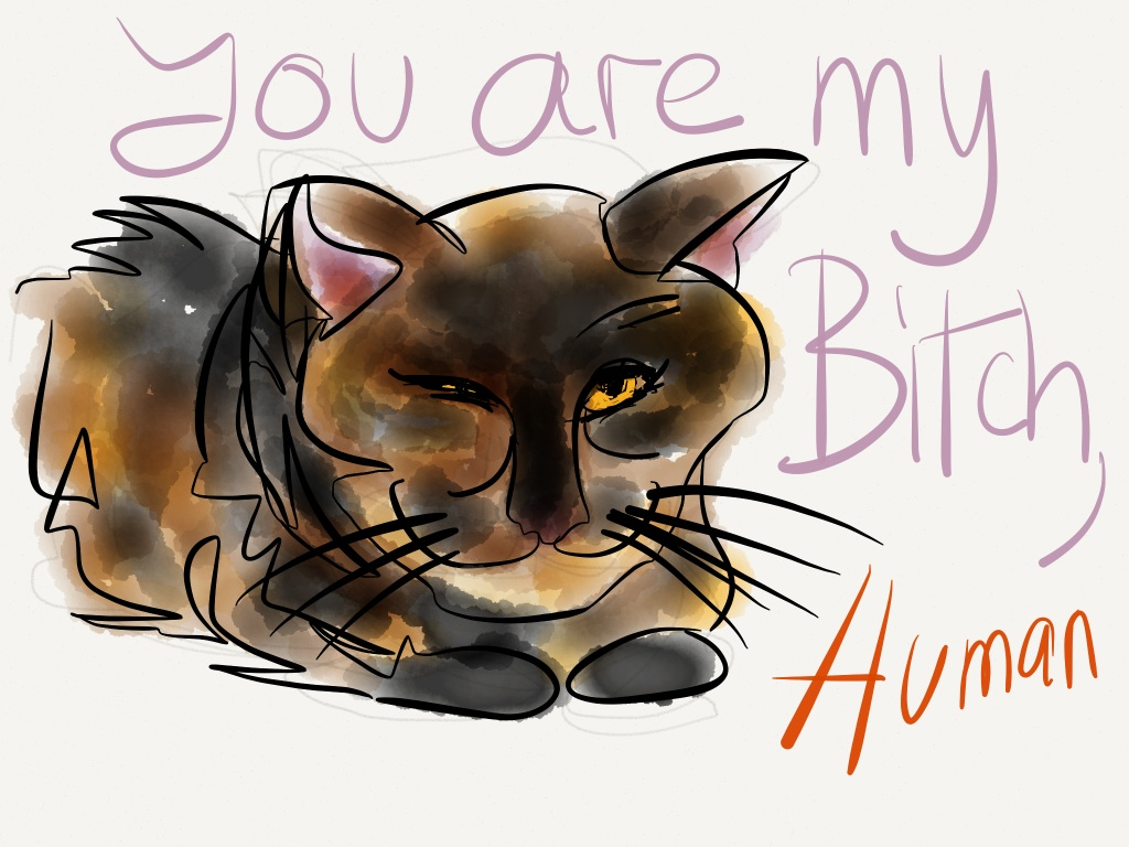 "Our cat Raisin drawn with the ""Paper"" app 5"
