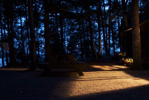 trees night maine timeexposure westgrandlake grandlakestream munsonisland