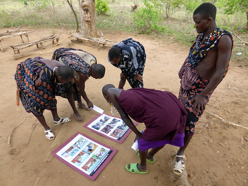 Livestock keepers in Morogoro, Tanzania examine a poster used to obtain informed consent for research
