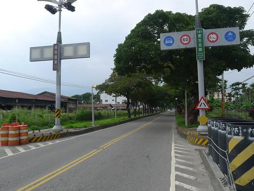 臺東往鹿野綠色走廊