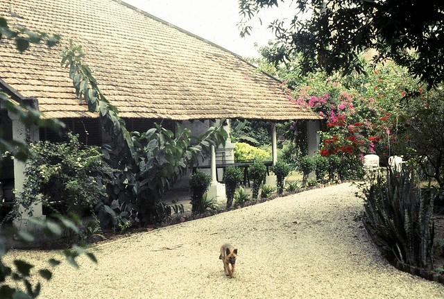Saïgon 1970-71. Notre villa rue Gia-Long, en face de l'hôpital Grall.