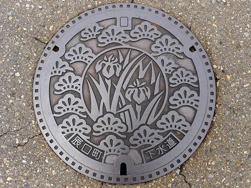 Tatsukuchi Ishikawa, manhole cover (石川県辰口町のマンホール)