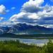 IMG_0535 blue skyes