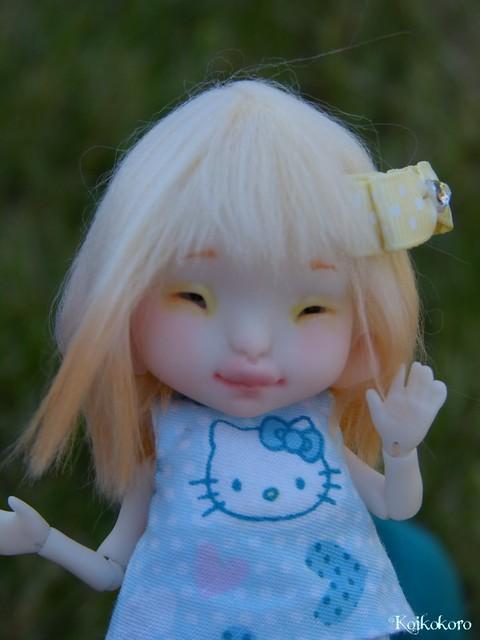 Les tinies de Koikokoro~photos en vrac - Page 6 15040053518_d8f84bfff2_z