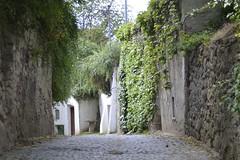 Kellerstrasse