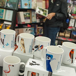 Birds in the bookshop |