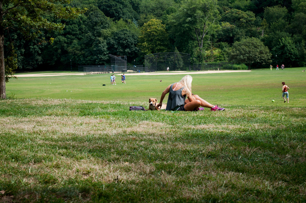Picnic in Prospect Park