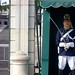 A National Republican Guard sentry outside the Presidential Palace, in Lisbon. by Teresa's Place/