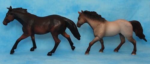 Walkaround of the Mojo Fun Sooty Bay Quarter Horse Stallion 15149768557_60aeb0f532