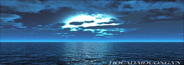 phông 3d hồ cá đại dương phong dd-05