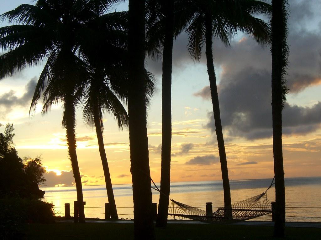 Palau Hammock