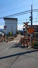 奈良   山上山裡的奈良