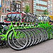 Small photo of Green Budget Bikes