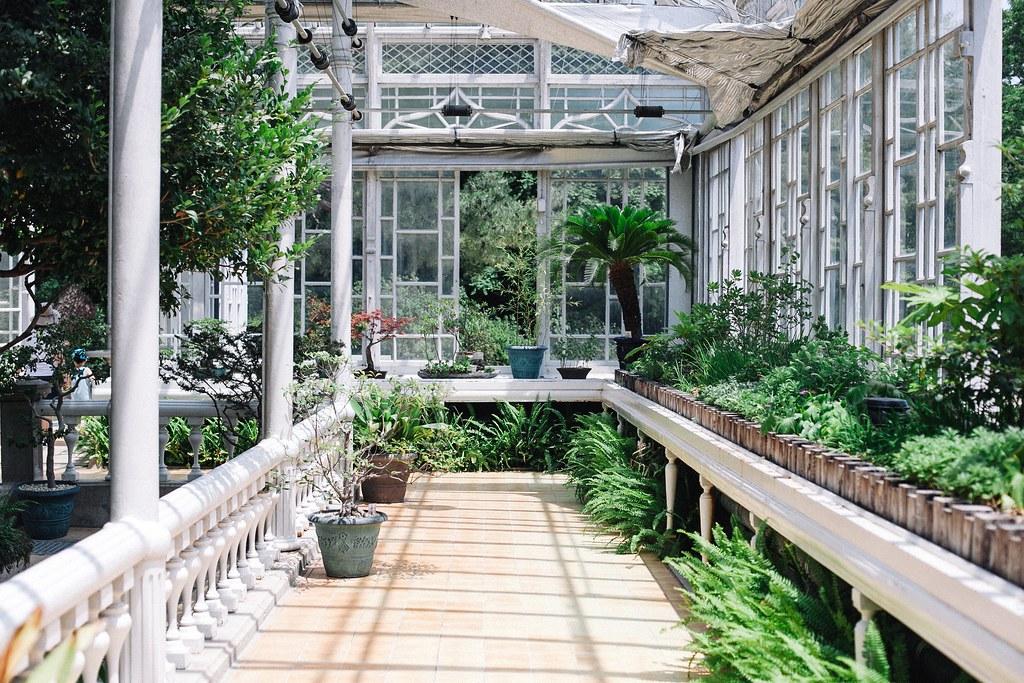 Seoul Greenhouse 004