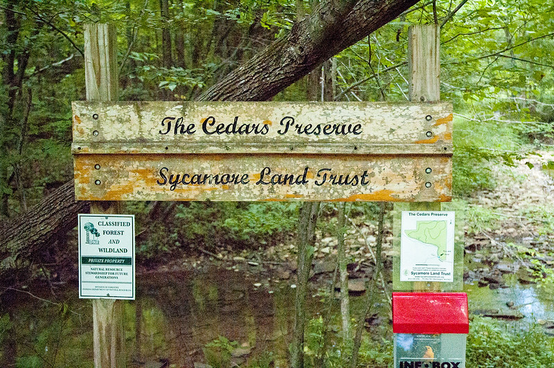 The Cedars Preserve