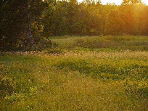 sunset newjersey greatswamp greatswampnationalwildliferefuge