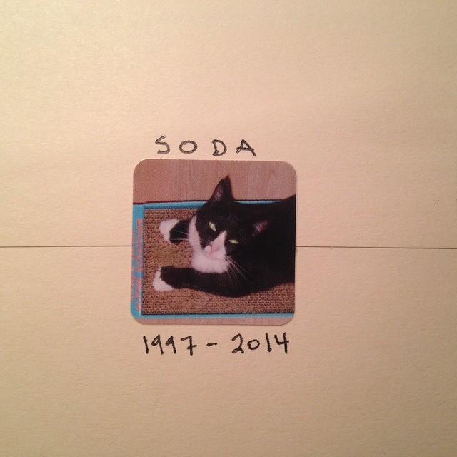 Soda letter seal