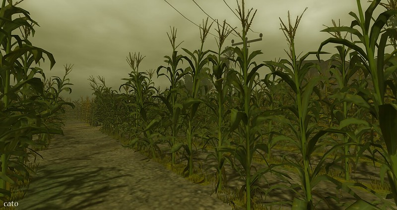 Portal Park to the Cornfield - V