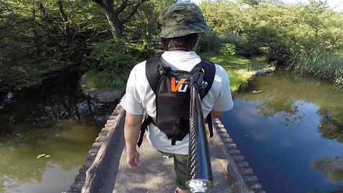 池の橋を渡る