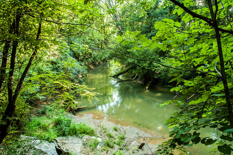 Orangeville Rise of the Lost River Nature Preserve