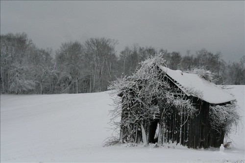 Hocking Hills shed in winter