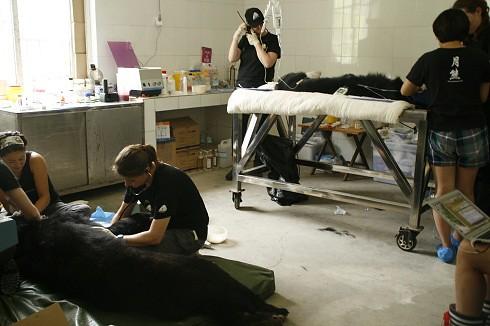 HC Room 4_MG_2446