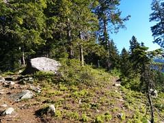 Aufstieg Kreuzkofel durch den Wald