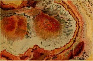 kokología rosa marmol
