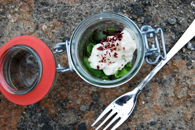 Wolf Fish Salad In A Jar
