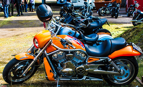 Harley Davidson#5