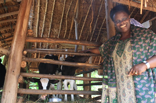 Woman with cow in Uganda