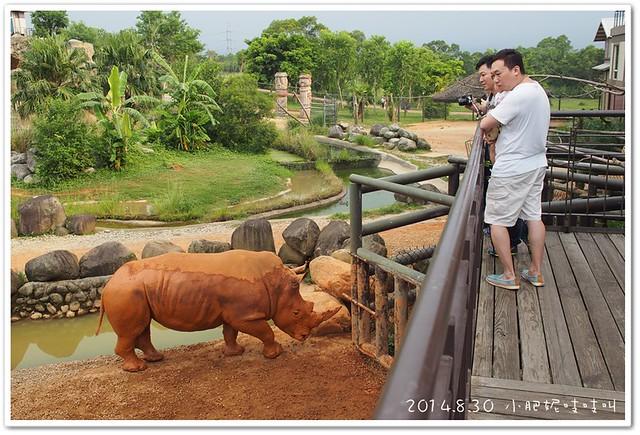 【關西六福莊生態度假旅館】就是來看動物的