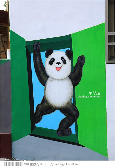 【雲林熊貓村】斗南鎮石龜熊貓村~最新!超萌又生動的立體3D畫彩繪村再一彈!19
