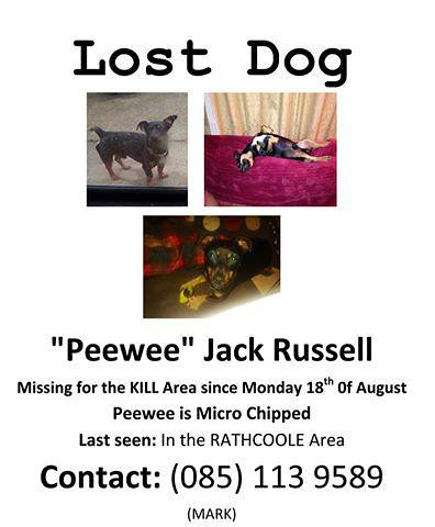 Mon, Aug 18th, 2014 Lost Male Dog - Unnamed Road, Kildare