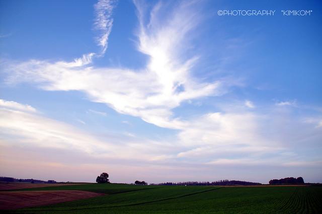 巻雲の夕空2
