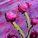 Mini Masterpiece/floral landscape by stevenascroggins