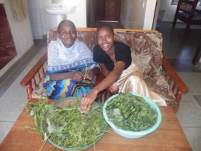Chabetty & Mwaka
