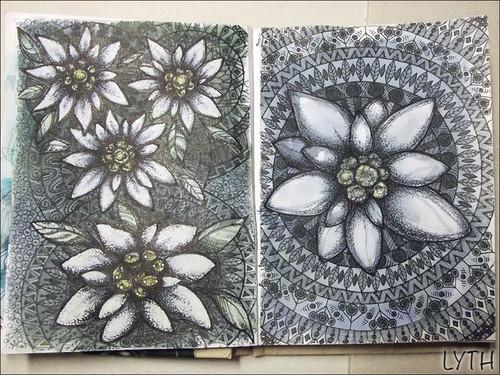 edelweiss-sketch-1