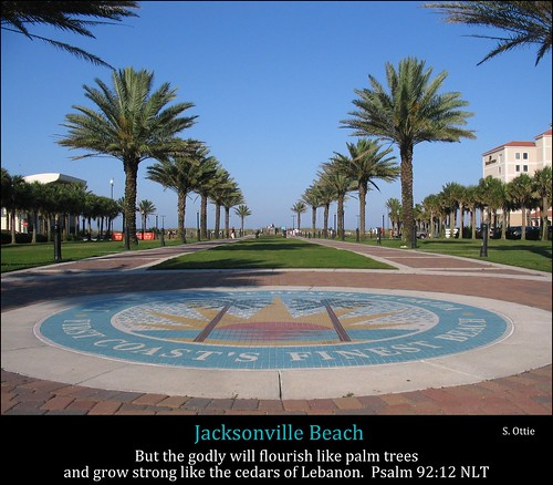 park plaza city trees sky urban usa green beach america logo us downtown florida united palm sidewalk jacksonville fl states jax latham oceanfront unusualviewsperspectives