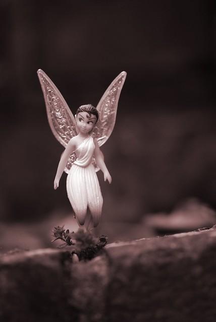 Fairy on a walk