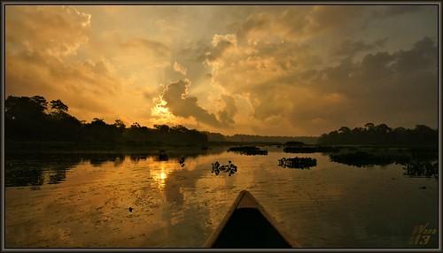 park sky reflection nature sunrise landscape texas sony ngc scenic canoe bayou npc pasadena canoeing paddling goldenhour waterscape waterhyacinth bayareapark clearlakecity a700 goldenmoment armandbayou sonya700 wanam3