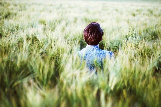 worteinbildern - Waiting for the birds in the fields