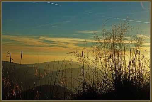 deutschland herbst berge fernsehturm aussicht schwarzwald alpin abendsonne dunst gräser blauen badenwürttemberg gipfel kleines münstertal wiesental belchen hochblauen fernsicht schönenberg belchendreieck 1414m