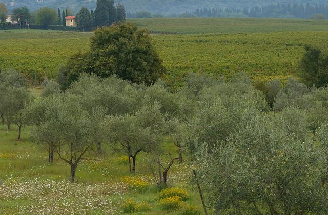 Italy-9.jpg