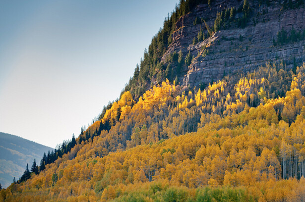 Colorado fall colors | Greg Moore