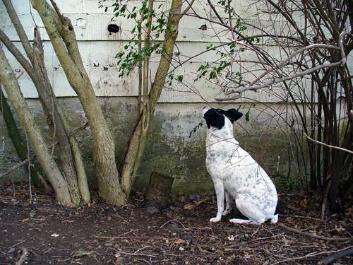 2007-04-12 - Peeping Jayne - 0018 [1024x768]