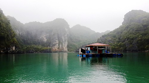 village dragon floating vietnam huts hut halong halongbay floatingvillage baitulongbay floatinghut baitulong floatinghuts