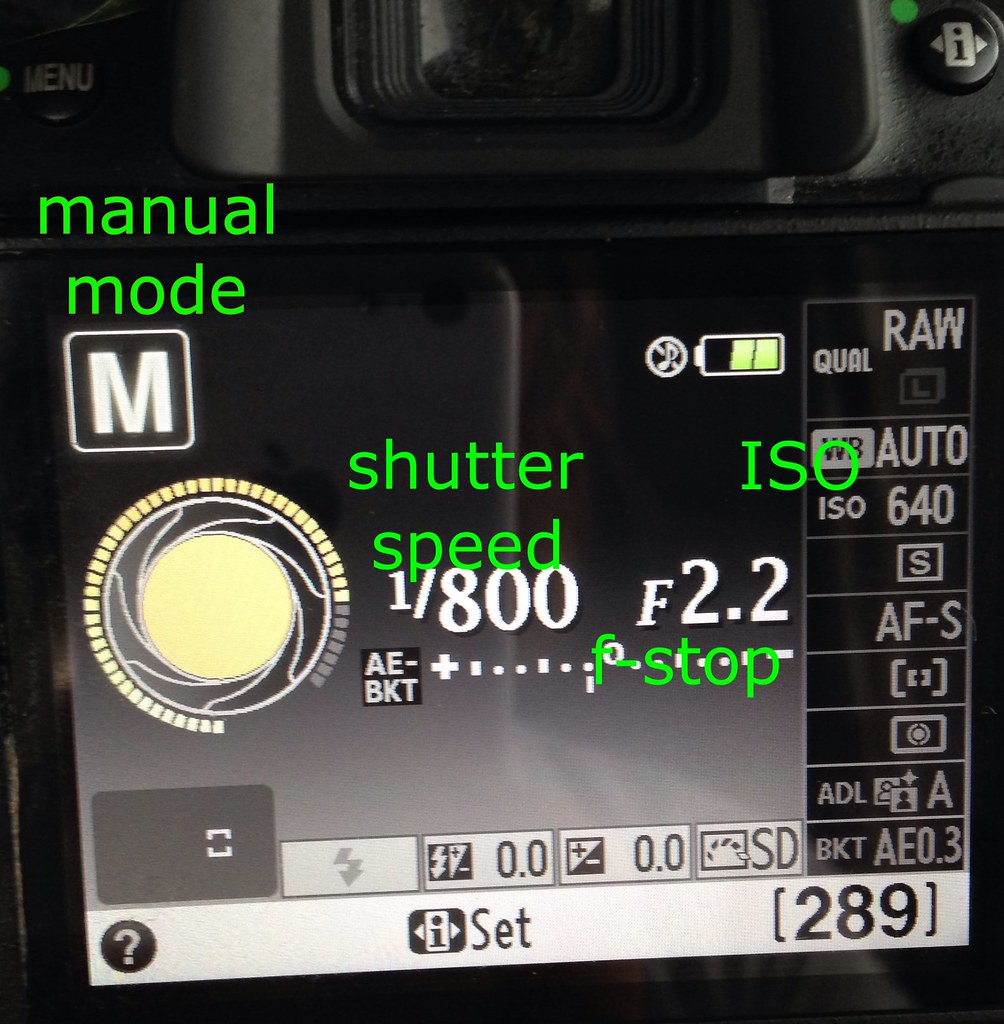 Nikon camera settings explained on back screen | perssonallyandrea.com