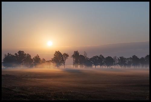 sunrise latvia safari latvija vidzeme saullēkts nikonafs28mmf18g nikond610 latviansafari latvijassafari